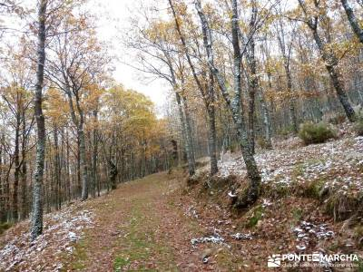 Molino Río Jarama-La Hiruela; calzada romana cercedilla sierra cabrera batalla de madrid